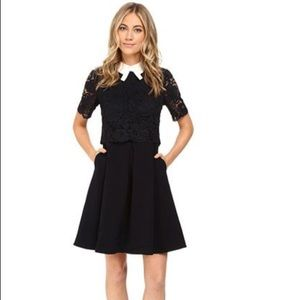 Ted Baker Dixxy Lace Bodice Double Layer Dress